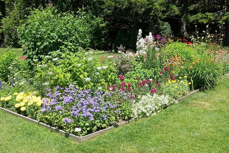 Big Guide for Planning Your Ideal Garden