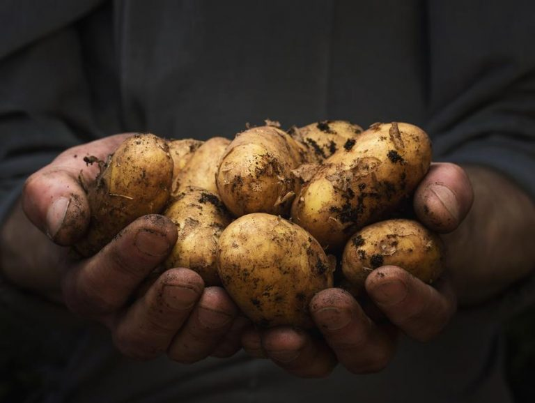 How to Grow Organic Potatoes From Potatoes (Seeds)