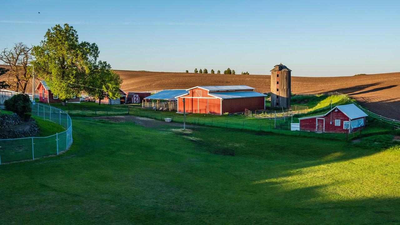 What Does a Farmer Do on the Farm?