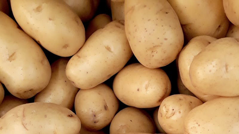 How To Grow Potatoes? [Everything You Need To Know]