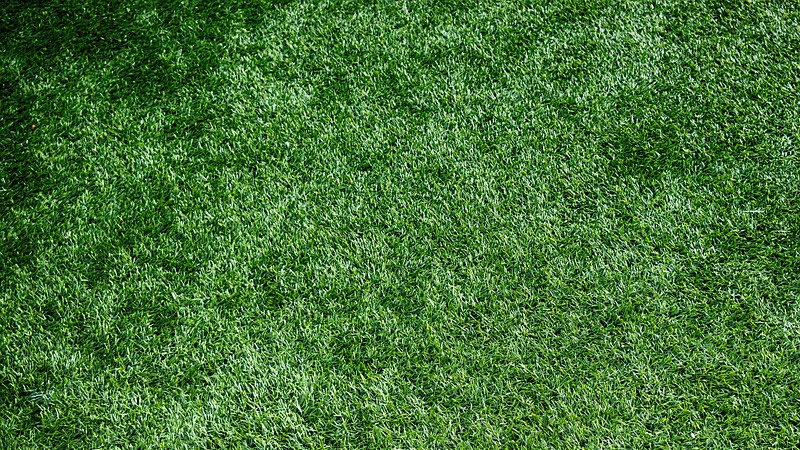 Does Bleach Kill Grass And Weeds?